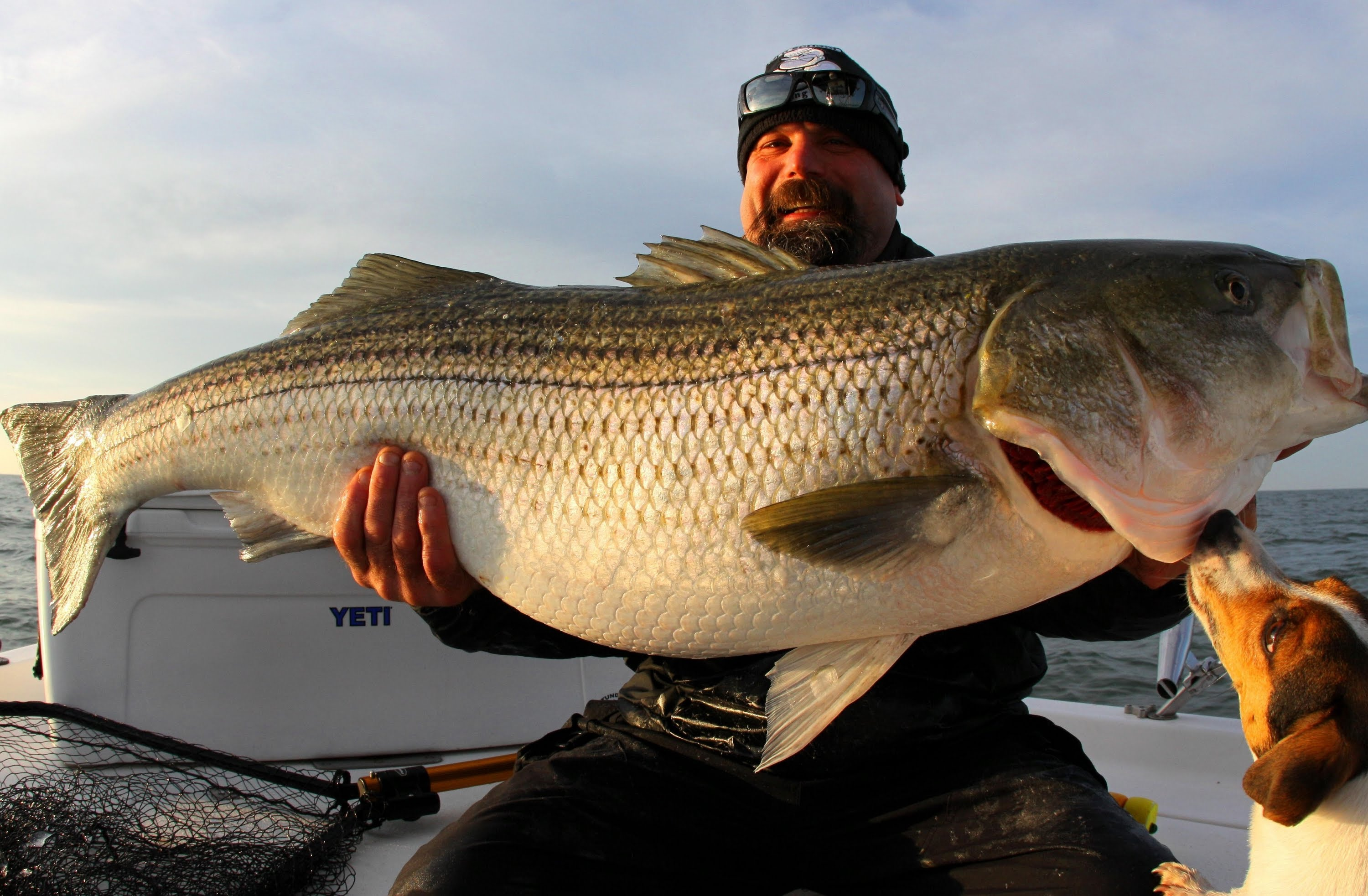 Biggest Striped Bass Ever Caught
